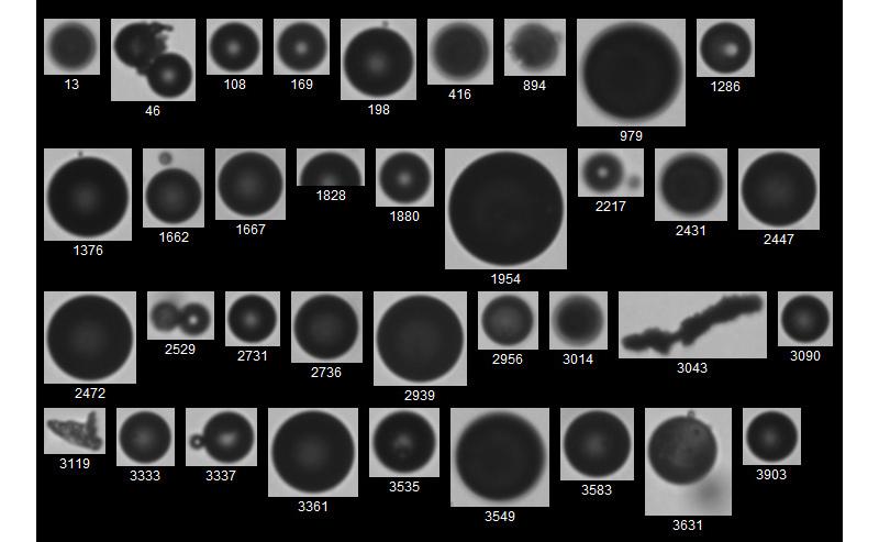 Skim Tank Analysis Images