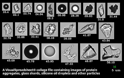 FlowCam Biopharmaceutical protein analysis differentiating intrinsic and extrinsic particles