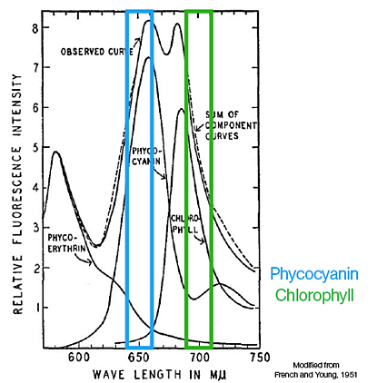 Phycocyanin and Chlorophyll Fluoresence as detected by the FlowCam Cyano