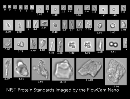 NIST Protein Standards FlowCam Nano
